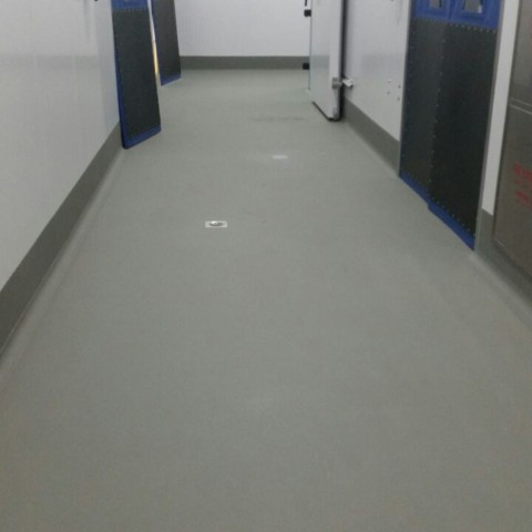 Flooring of Frozen Food Factory UAE